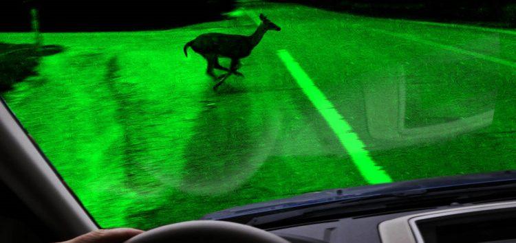 Сенсор нічної зйомки допоможе машинам бачити в темряві