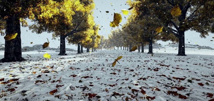 У Ford довели що листя таке ж слизьке, як і сніг