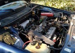Заміна клинового ременя STARLINE SR 13X750 на FIAT CROMA (відео)