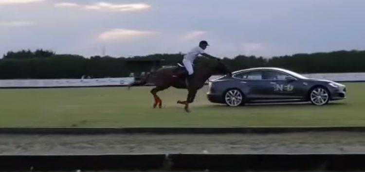 Tesla Model S позмагалася з конем (відео)