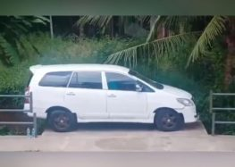 Майстер паркування на носовій хустині (відео)