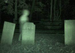 Датчики Tesla побачили привида (відео)