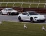 Електричний Porsche виявився крутіше легендарних спорткарів (відео)