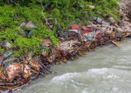 У США використовують старі машини для зміцнення берега