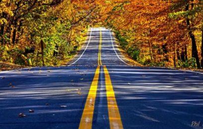 Що варто пам'ятати при їзді восени